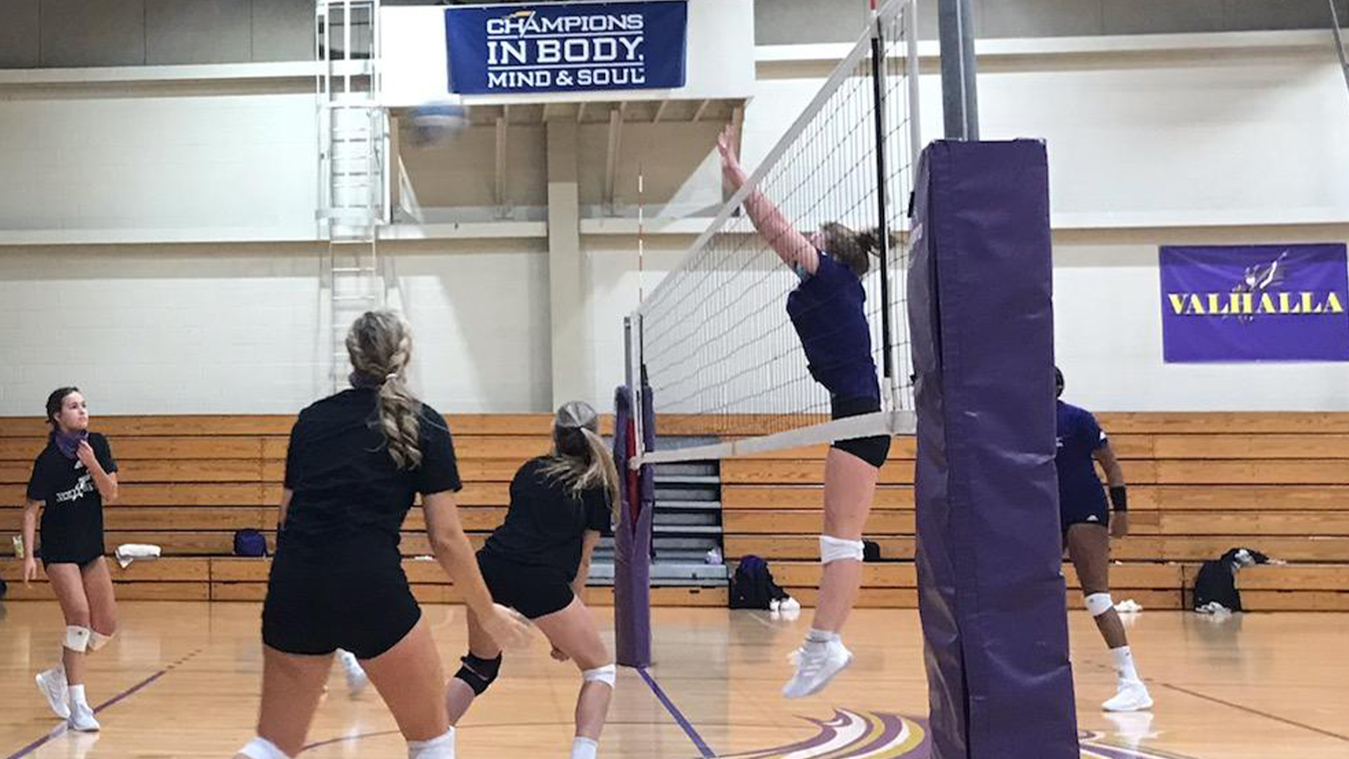 Women's Volleyball - Converse College
